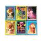 Mini Puzzle Set 6 Boxes Assorted Barbie